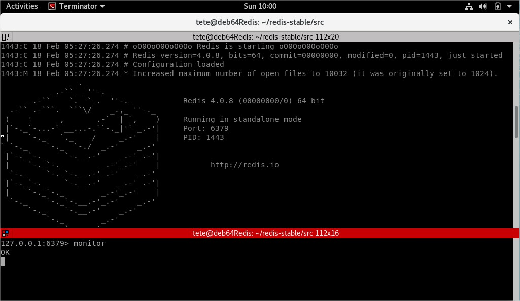 Redis in all its glory